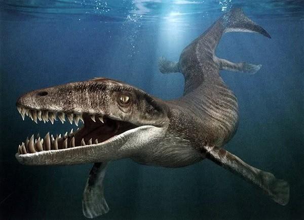 """Cận cảnh """"quái vật"""" đại dương thời tiền sử 4"""