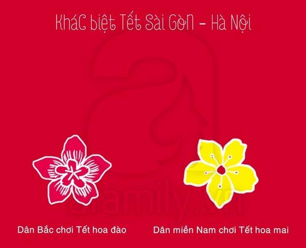 Khám phá những điểm khác biệt giữa ngày Tết ở Sài Gòn - Hà Nội 3