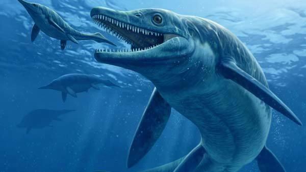 """Cận cảnh """"quái vật"""" đại dương thời tiền sử 8"""