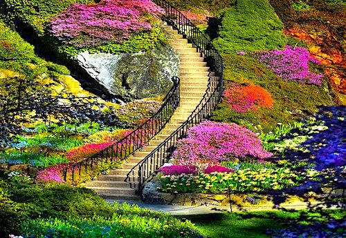 Vườn hoa Butchart ở Vancouver (Canada). Có mặt trong danh sách những vườn hoa đẹp nhất thế giới, nơi đây thu hút hơn 1 triệu du khách tham quan hàng năm.