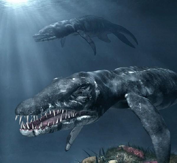"""Cận cảnh """"quái vật"""" đại dương thời tiền sử 11"""