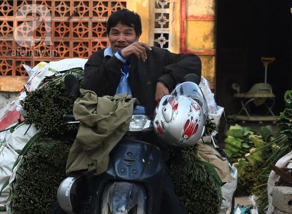 Về nơi hiếm hoi ở Hà Nội trồng lá dong gói bánh chưng kiếm cả trăm triệu dịp Tết 13