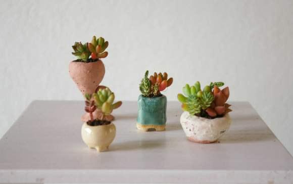 Mini bonsai: Bé tí ti, nhìn là thích