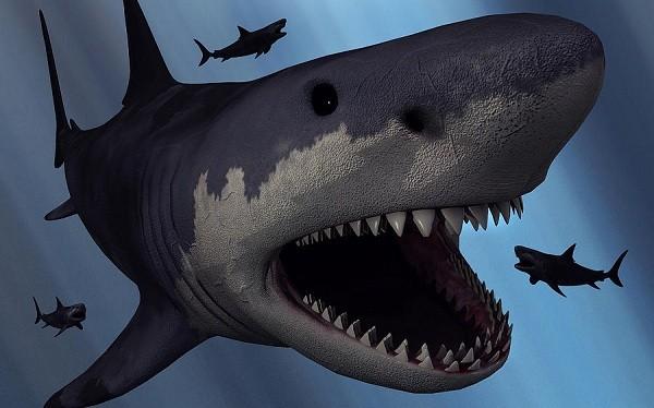 """Cận cảnh """"quái vật"""" đại dương thời tiền sử 13"""