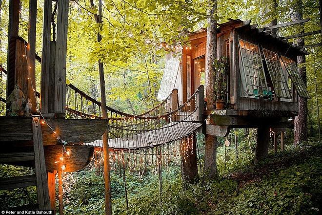 Những ngôi nhà cây dành cho fan của 'Cậu bé rừng xanh'