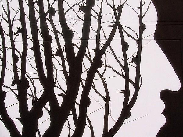Những truyền thuyết kỳ quái trong rừng rậm Amazon 2