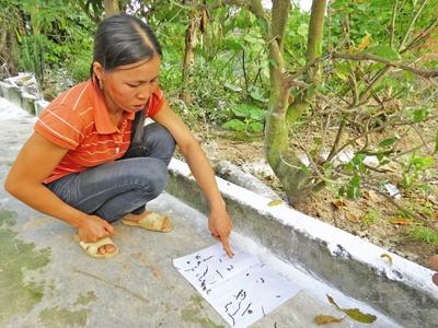 Quảng Bình: Hàng ngàn sinh vật lạ chui từ đất lên?