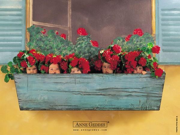 Thêm những bức ảnh đẹp lung linh của bé và hoa 8