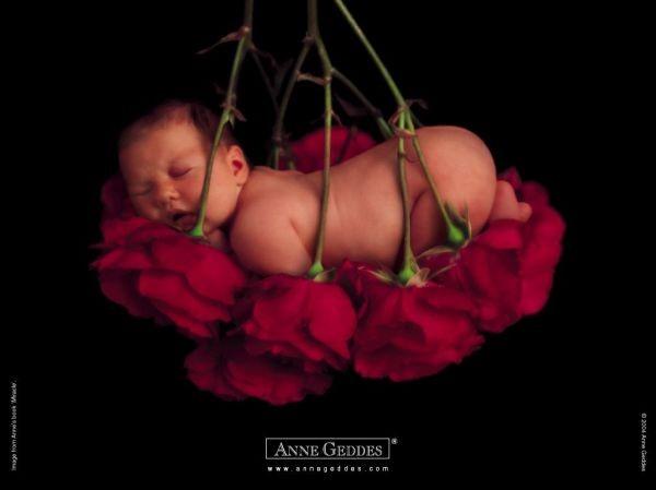 Thêm những bức ảnh đẹp lung linh của bé và hoa 11