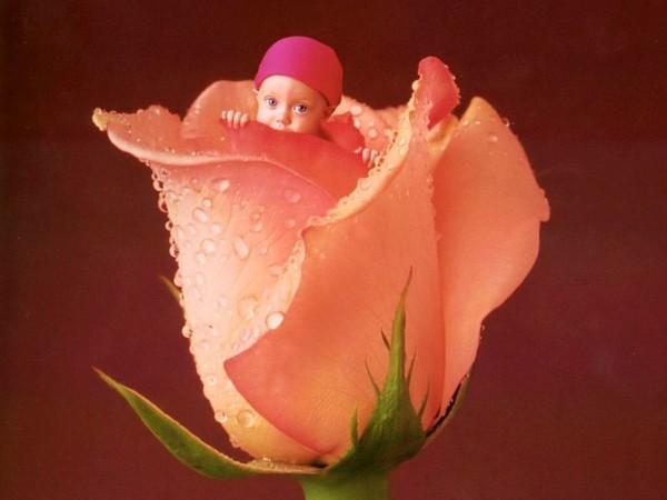 Thêm những bức ảnh đẹp lung linh của bé và hoa 7