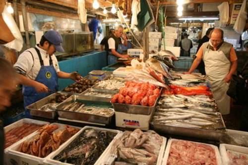 Sổ tay du lịch so tay du lich Sotaydulich  Sotay Dulich Khampha Kham Pha Bui Tour tham quan cho ca Tsukiji  va tu tay lam sushi