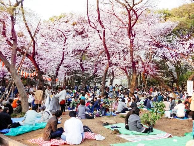 """4 điều luật gây """"sốc"""" cho khách du lịch Nhật Bản - 1"""