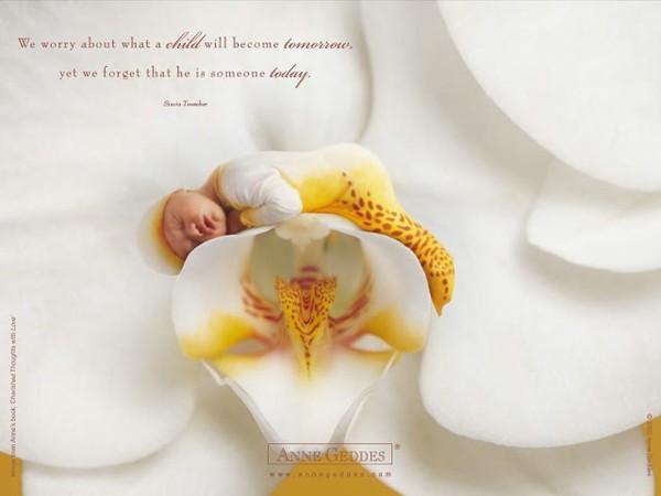 Thêm những bức ảnh đẹp lung linh của bé và hoa 1