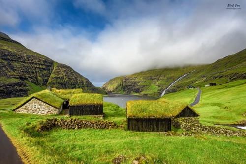 Những ngôi nhà được bao trùm bởi lớp cỏ dày