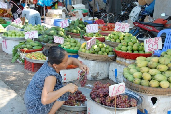 Các điểm bán trái cây ở chợ tỉnh cắm bảng chào giá bán các loại xoài, tuy nhiên, giá cao hơn so với nhà vườn trực tiếp ra bán.