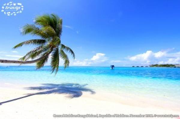 Bãi biển trắng mịn bên làn nước xanh ngọc đặc trưng ở khu resort Conrad Maldives Rangali.
