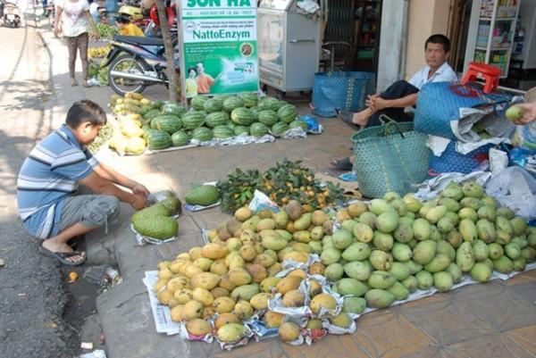 Nông dân đem xoài ra chợ bán hy vọng được giá cao, nhưng do đụng hàng xoài chín mùi nên vừa bán vừa tặng cho khách, để mời khách mua với số lượng lớn.