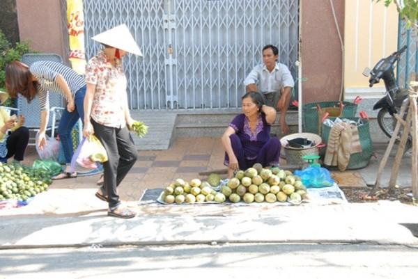 Thậm chí, nhiều nhà vườn không kịp thu hoạch xoài mang ra chợ bán, xoài chín liền đem đi từ thiện ở các chùa hoặc cho người nghèo.
