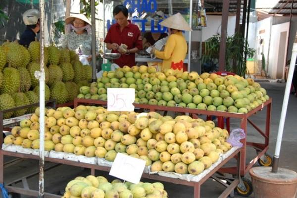 Theo chị Tiết Lan, tiểu thương kinh doanh xoài ở chợ Xuân Khánh, thành phố Cần Thơ cho biết: năm nay lượng xoài về nhiều ở chợ, giá bán giảm nhiều so với mọi năm nhưng sức tiêu thụ lại rất chậm.