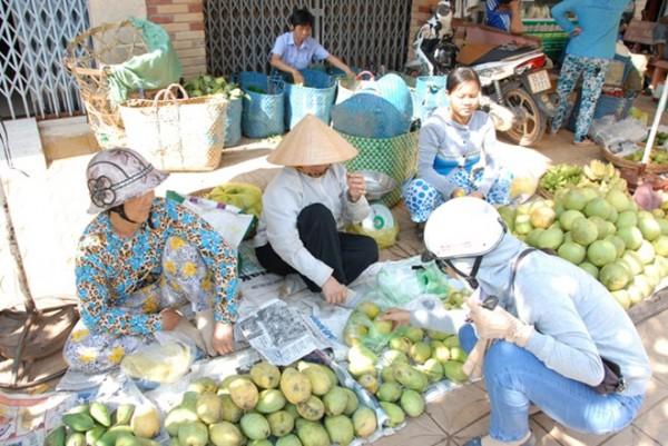 Mấy tuần nay, miền Tây đang bước vào mùa xoài, nên loại quả này xuất hiện tràn ngập ở các chợ hoặc bày bán khắp hè phố các quận, huyện trung tâm.
